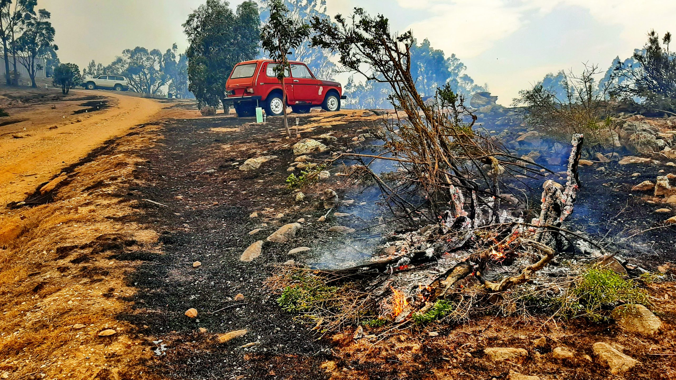 A red car parked on a road surrounded by burned land from a bush fire.