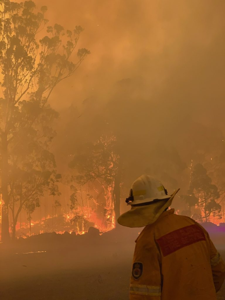 A firefighter in a yellow jacket and white helmet looking towards a bush fire