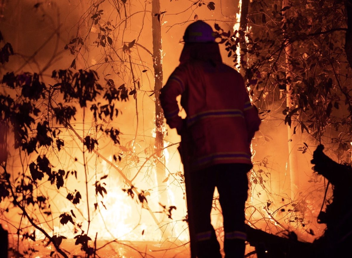A firefighter in a yellow jacket and trousers and a whit helmet looking towards a bush fire