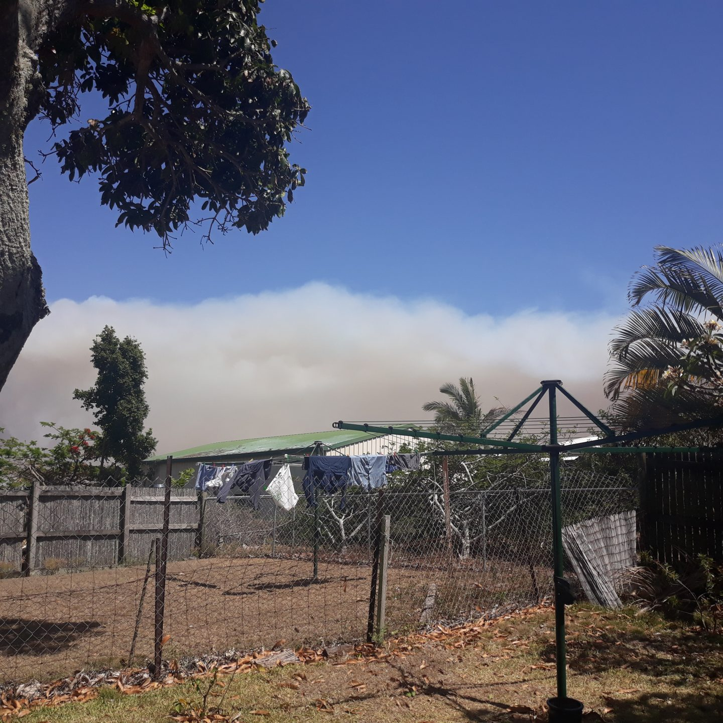 A backyard with a hills hoist clothes line and a large plume of smoke in the background.