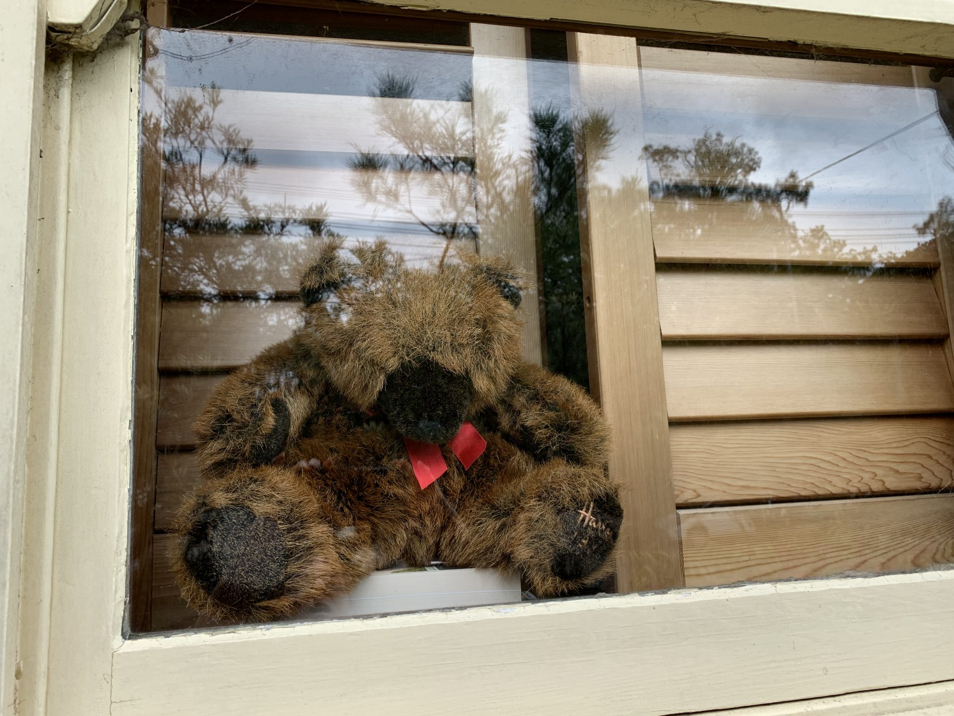 A small brown toy bear sitting in a window behind the glass.