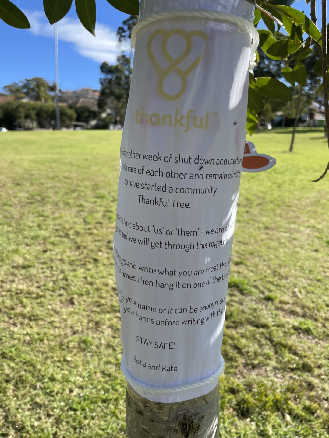 Poster wrapped around thankful tree.