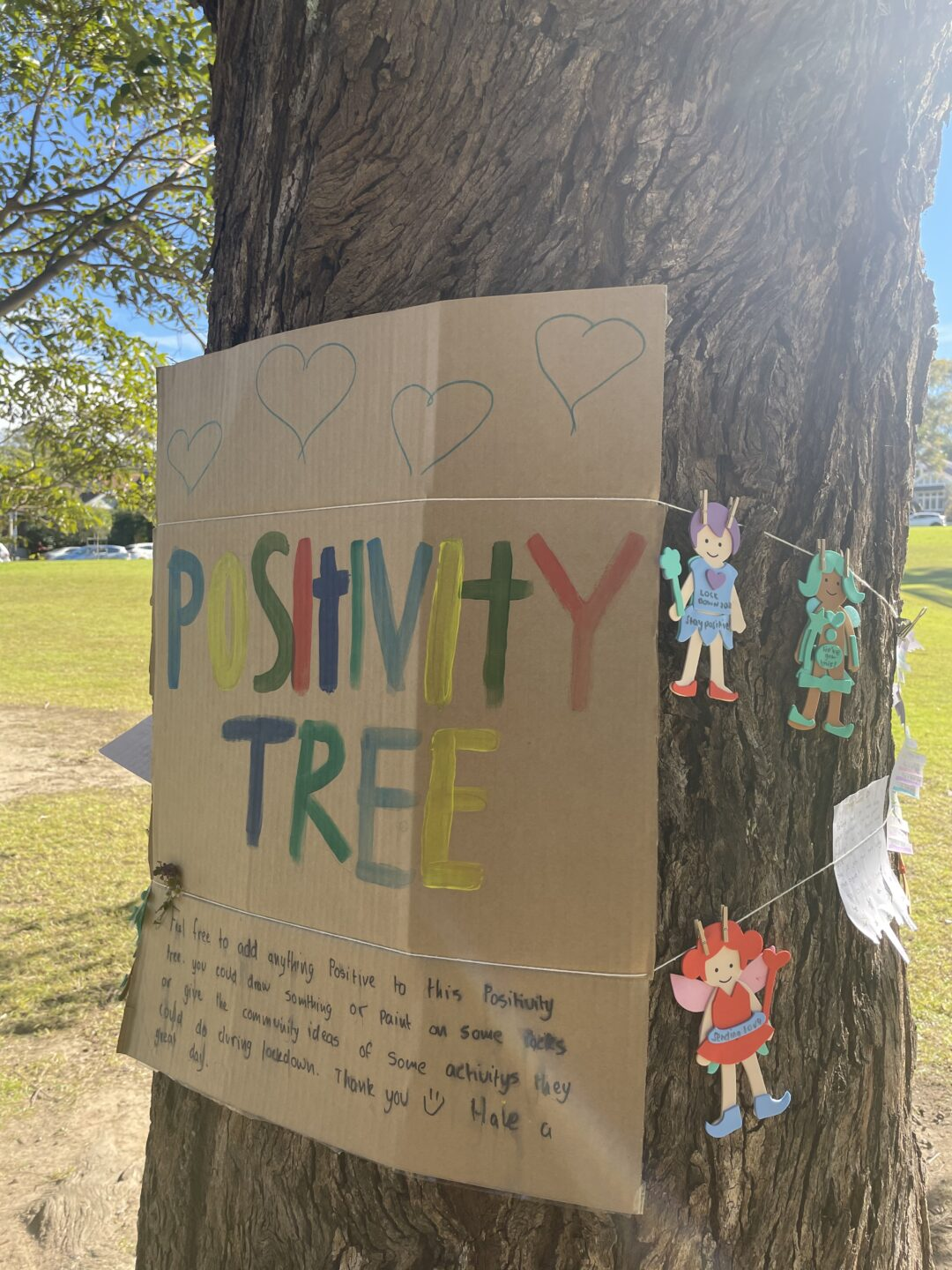 Sign tied to tree trunk 'Positivity Tree'.