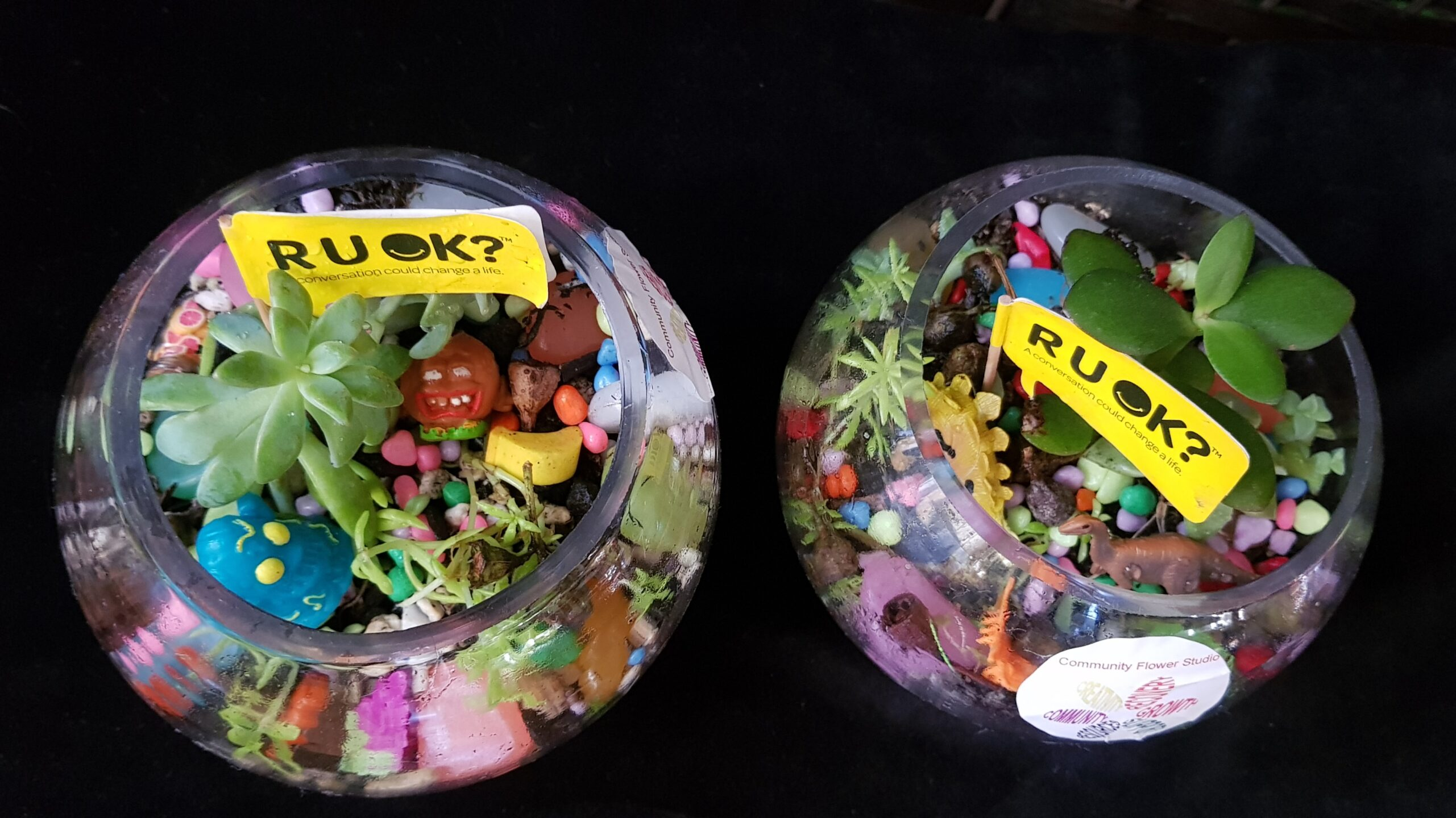 Two terrariums with small yellow flags in them that say R U OK ?