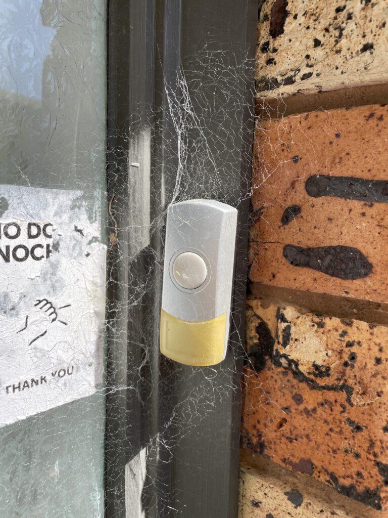 Doorbell with cobwebs surrounding it.