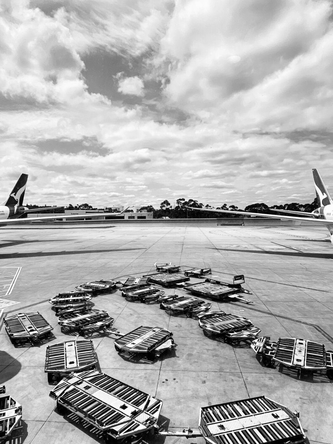 black and white image of empty luggage trolleys and the back of plane wings with kangaroos visible (the QANTAS logo)